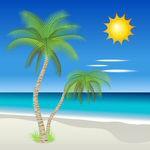 Palmetræ strandscene (sommer)